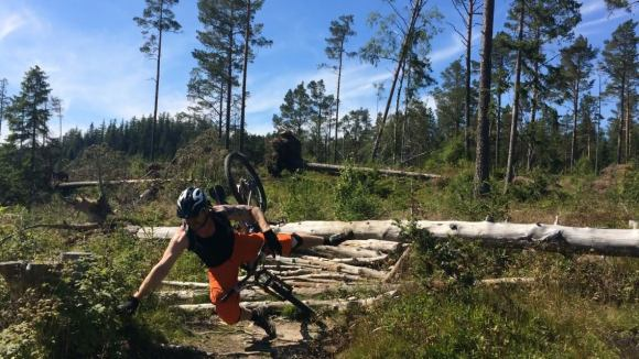 Specialized bymarka sti bærstiene bringebærstien blåbærstien enduro trail kræsj sykelkræsj mtb crash